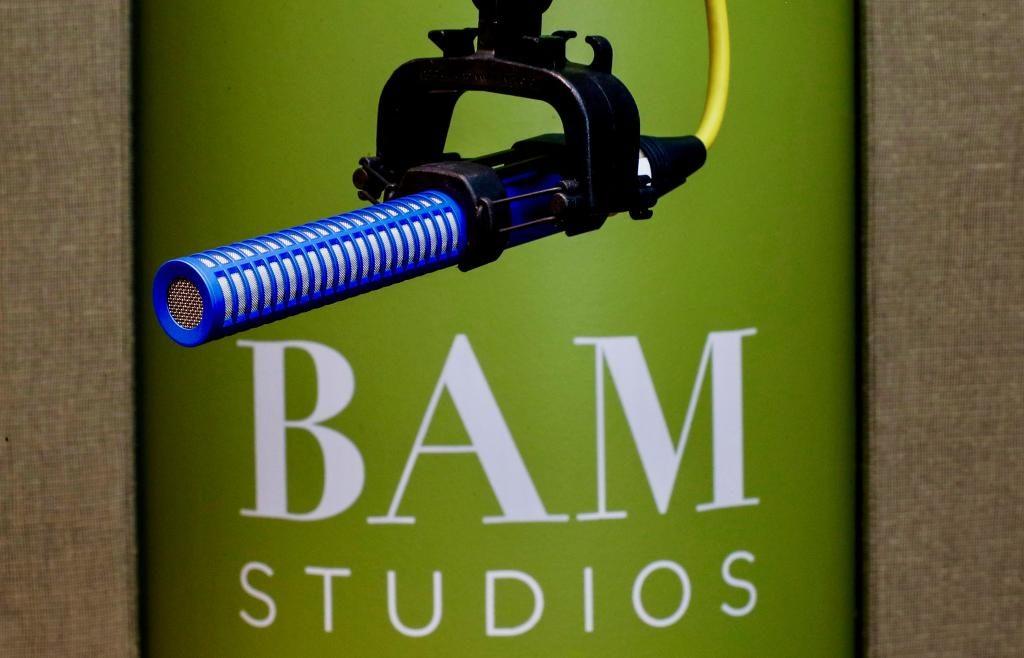 BAM ADR Microphone